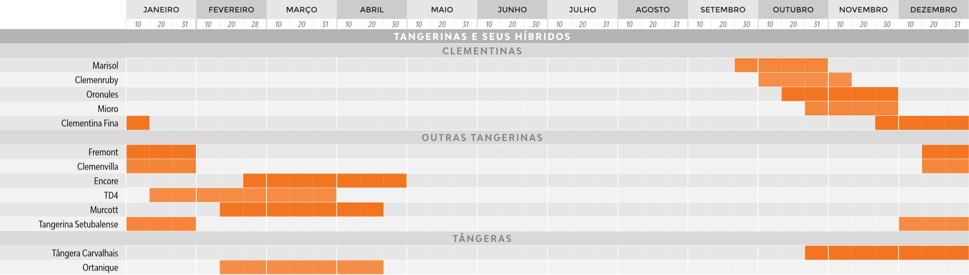 CALENDARIO_tangerina
